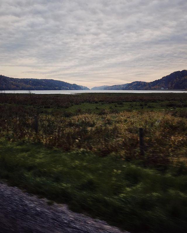 Vi har varit på Nordens Ark idag. Är man tre månader gammal tycks utsikten från bilen på väg från parken vara det som är höjdpunkten på dagen. #lillemansbetraktelser #wayupnorth