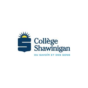college-shawinigan-parking.jpg