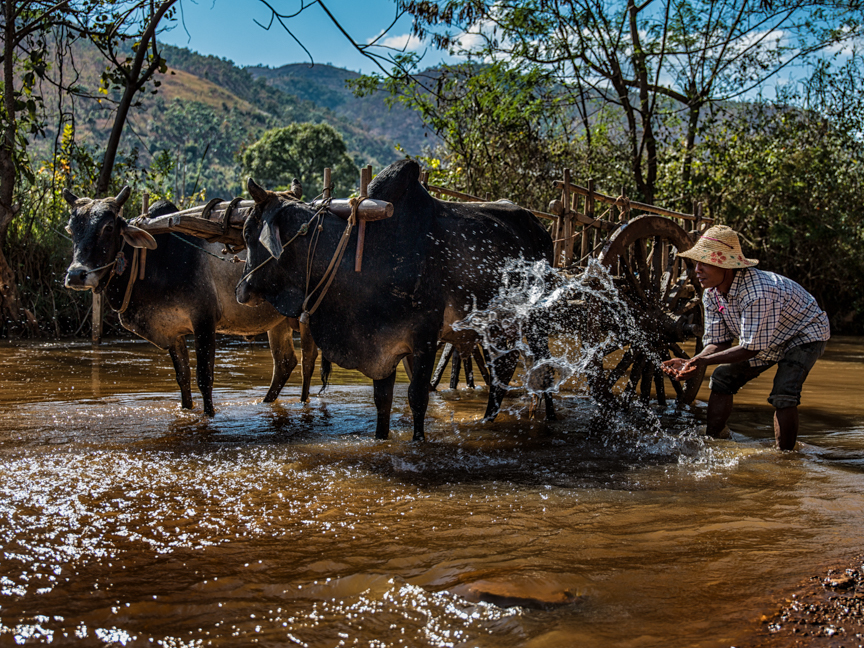 Myanmar copyright maxVmax-25.jpg