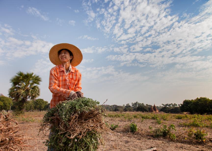 Myanmar copyright maxVmax-31.jpg