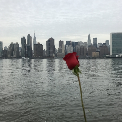 Kind of random photo but I saw this rose along the boardwalk in LIC the day after Valentines Day, perched along the pier. It's GREY in NYC, but it made me happy. Love Love.