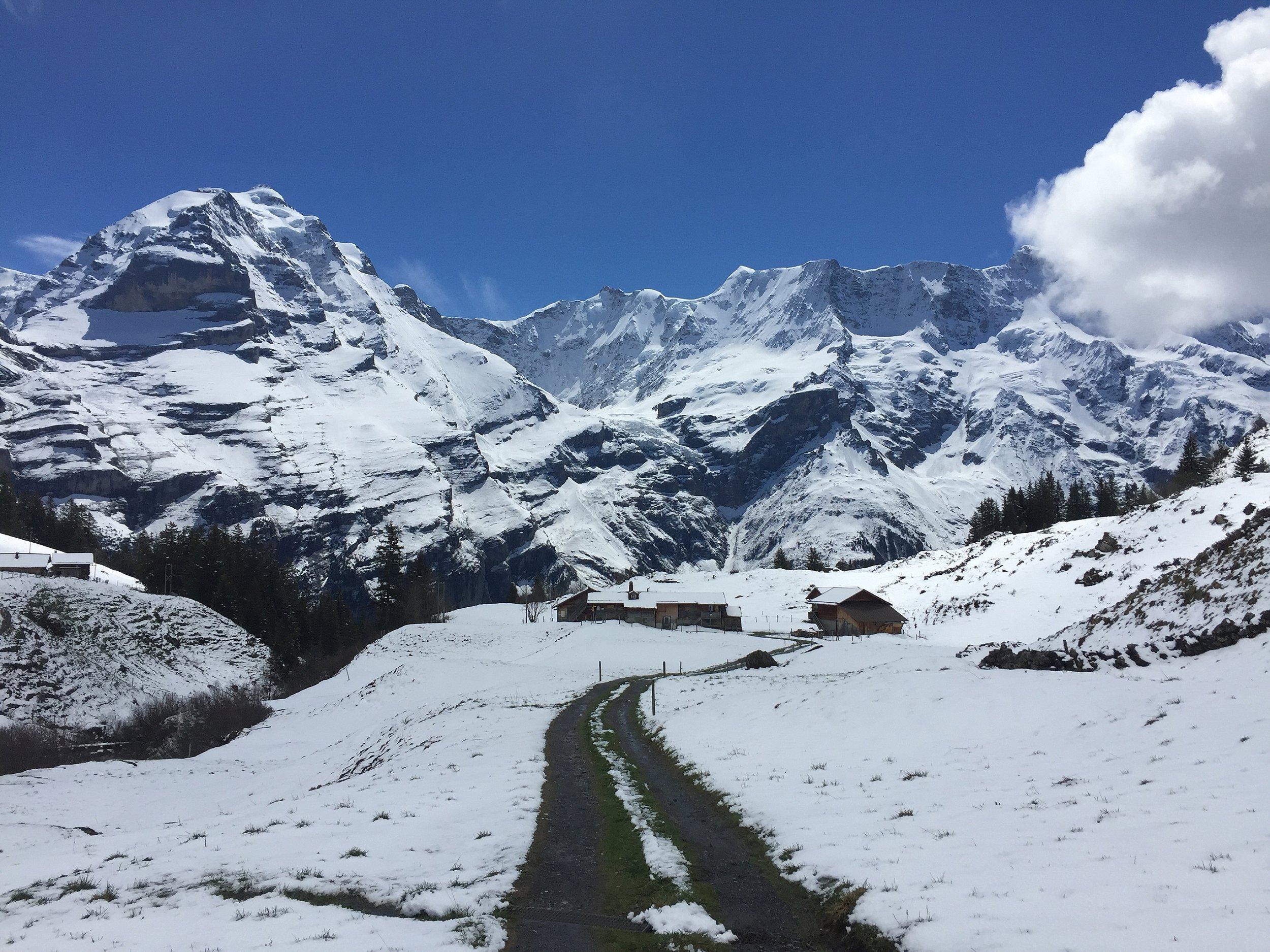 North Face Trail_0009.jpg