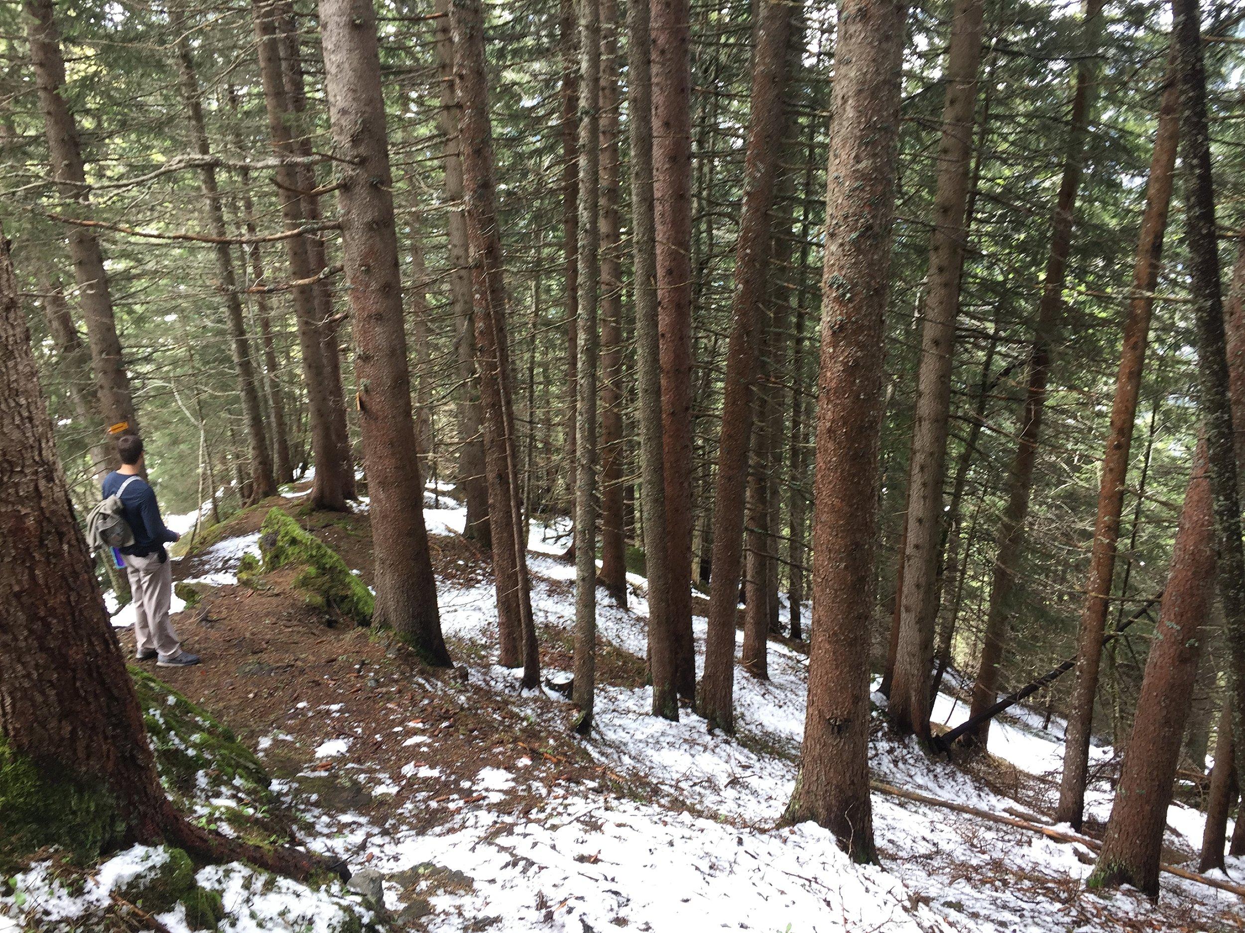 North Face Trail_0011.jpg