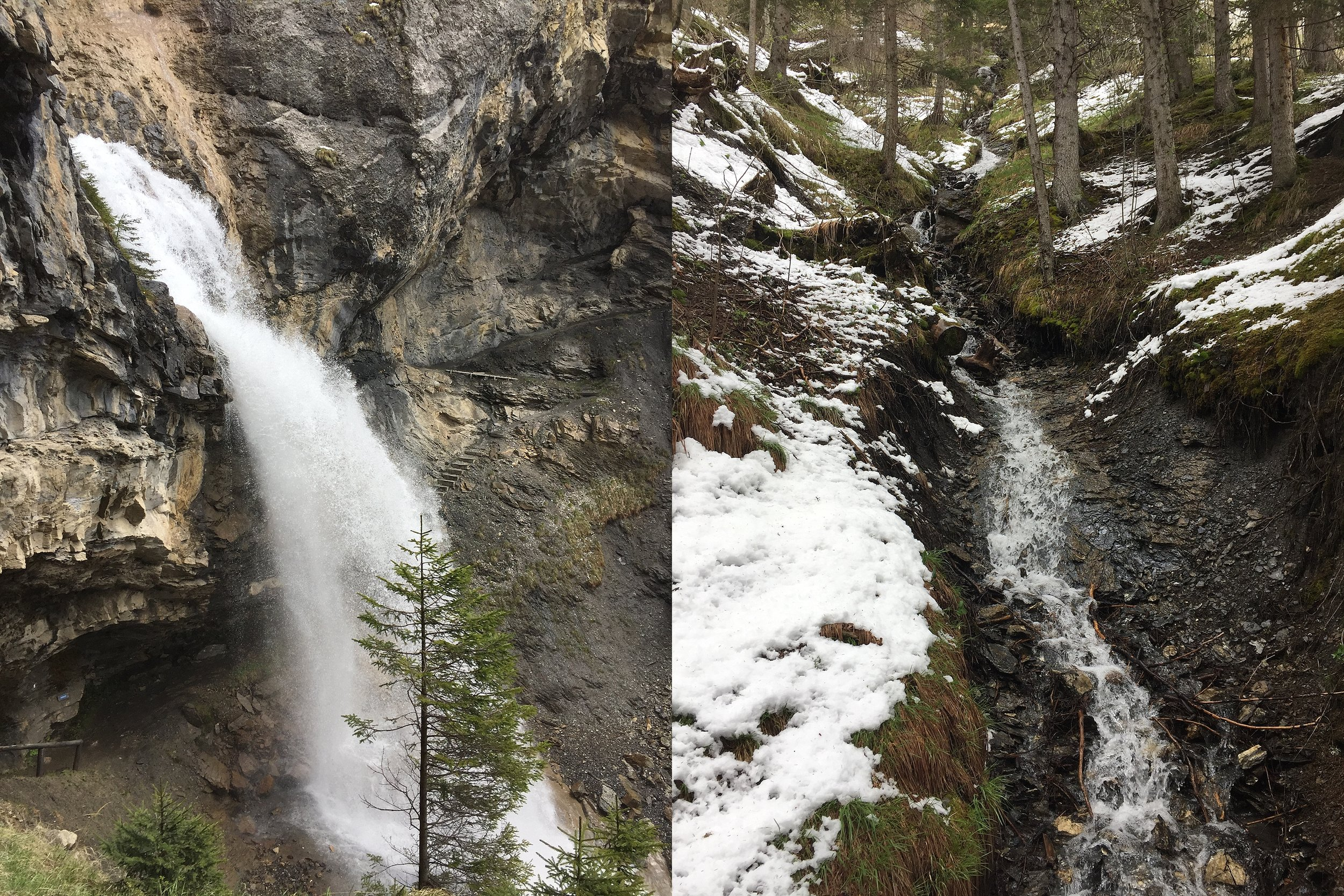 North Face Trail_0012.jpg