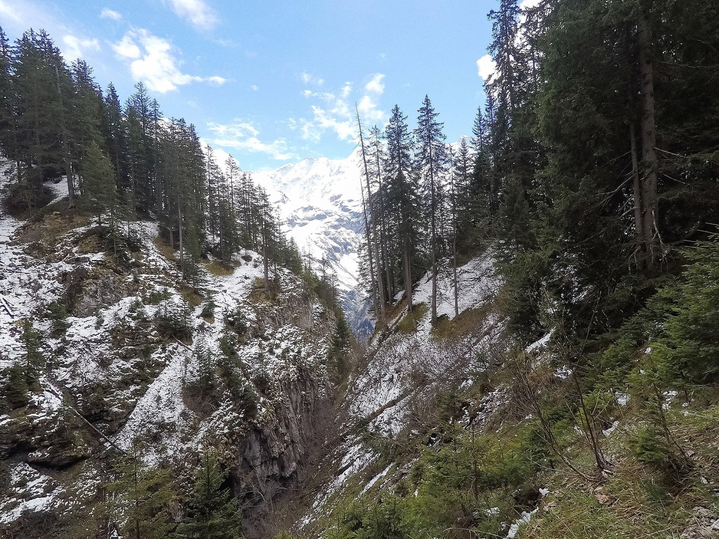 North Face Trail_0014.jpg