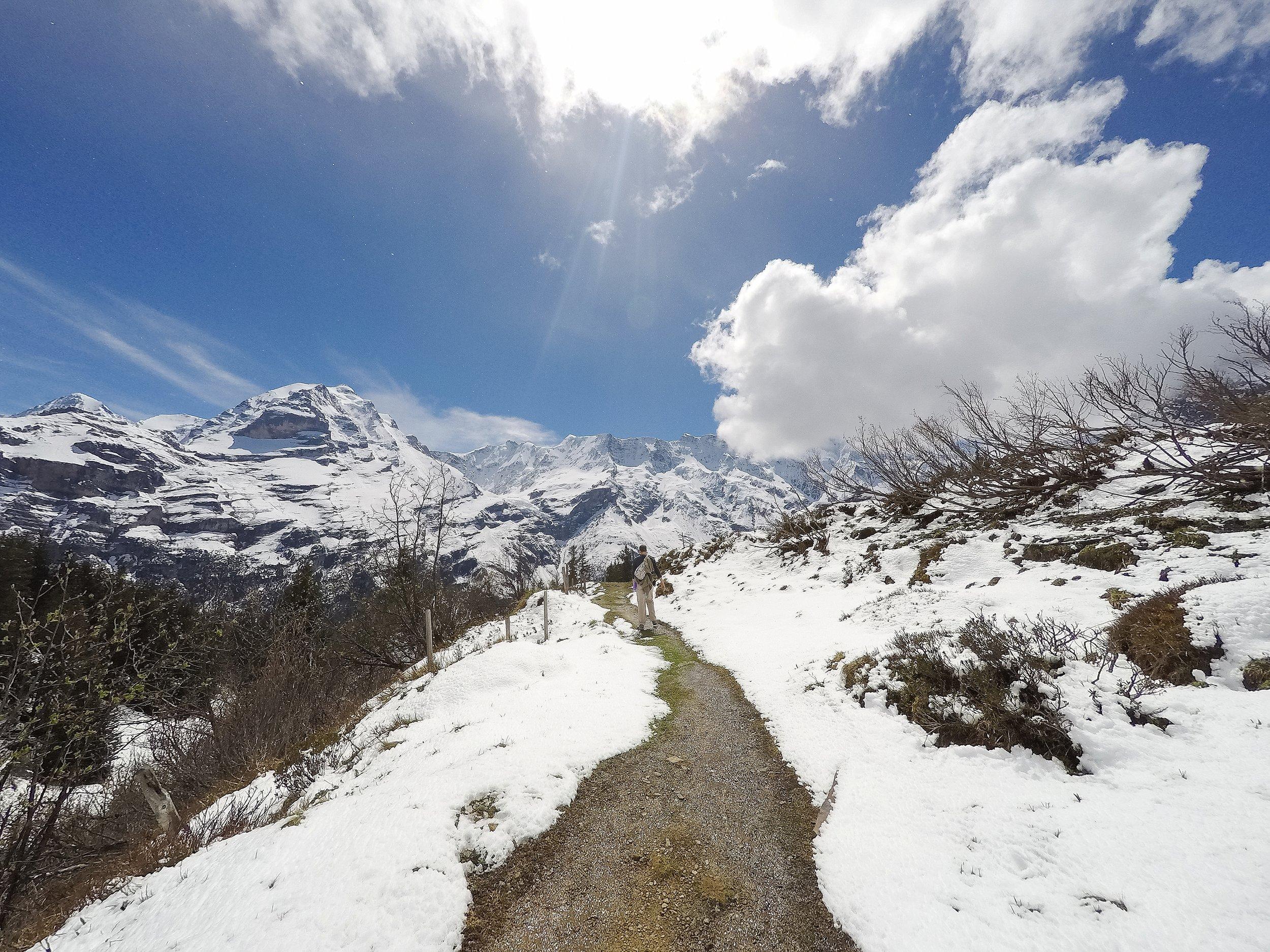 North Face Trail_0017.jpg