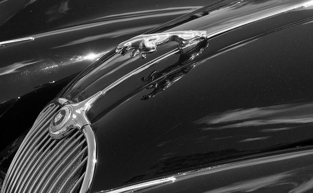 jaguar repair maryland.jpg