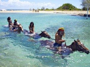 falmouth_horseback_riding_excursion_with_ocean_swim_443-13.jpg