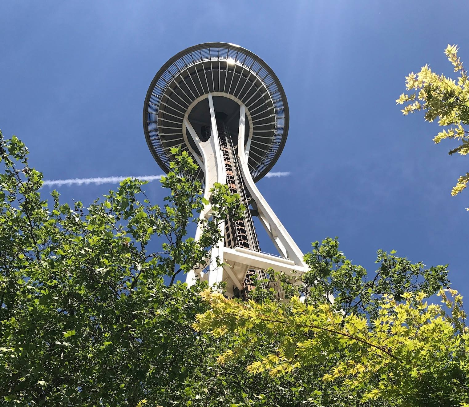 Space Needle Seattle Renovation Project