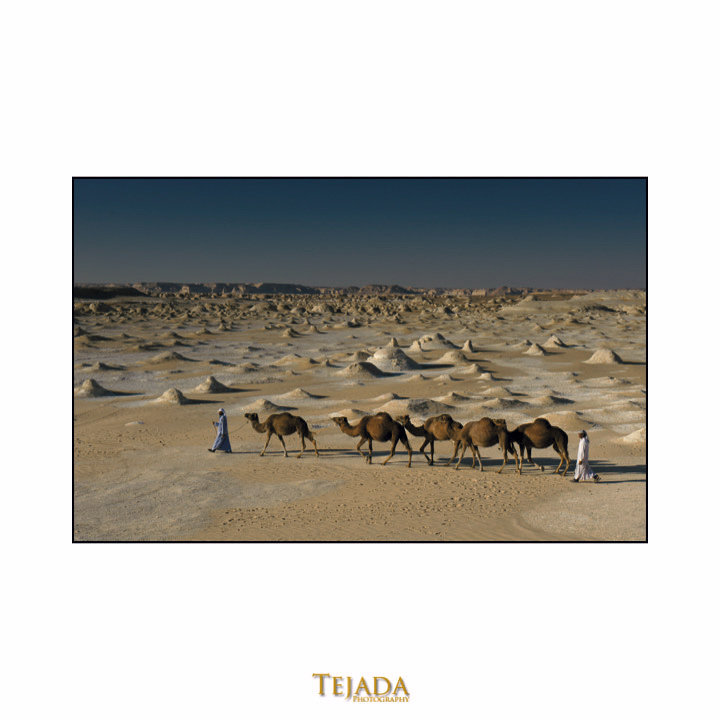 egypt-slideshow-29.jpg