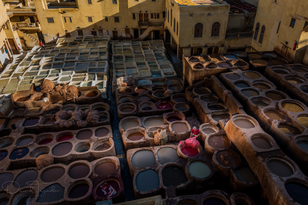 Tannery, Fes, Morocco.