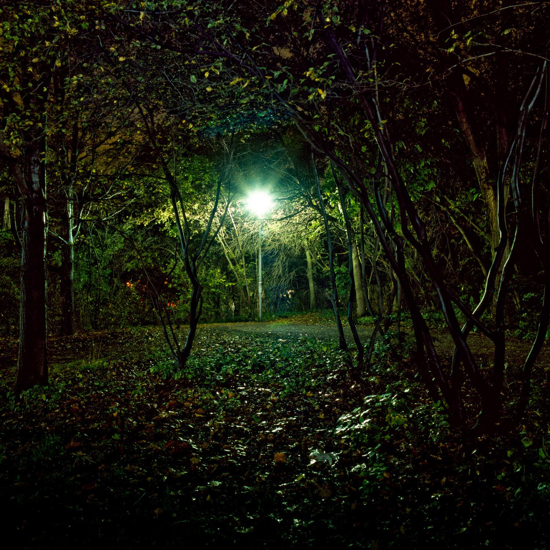 In the Park-3.jpg