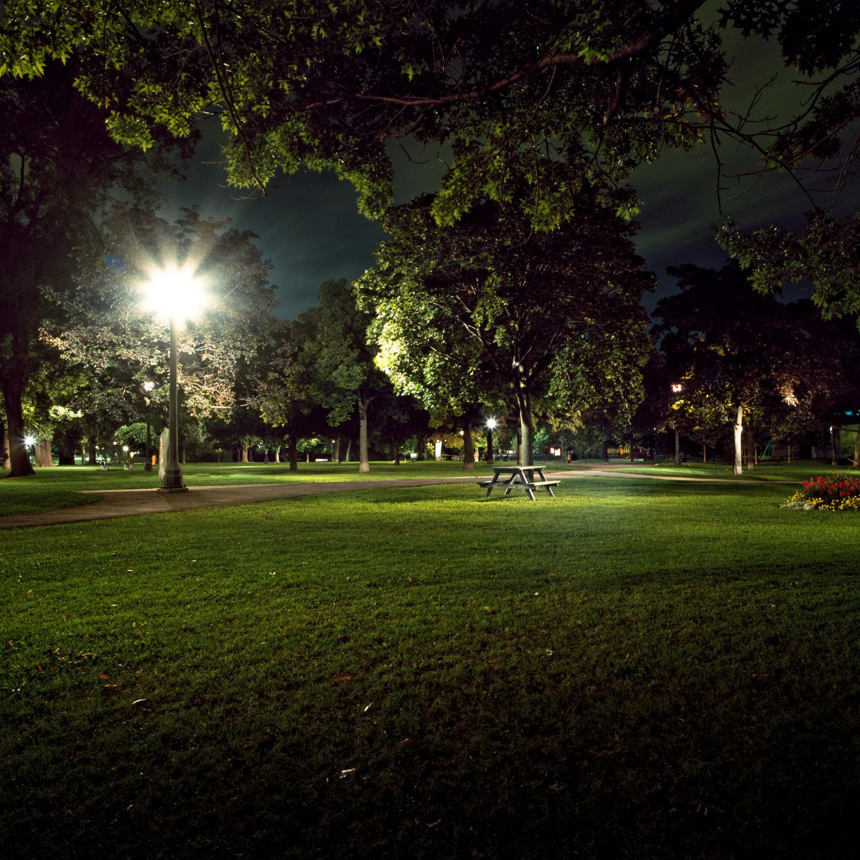 In the Park-16.jpg