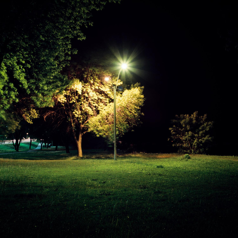 In the Park-20.jpg