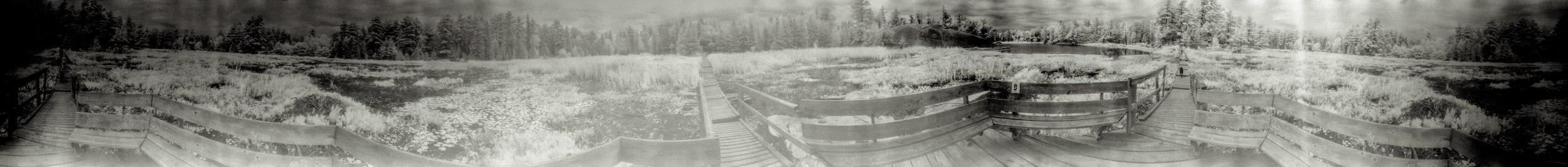 Platform at the centre of a bog