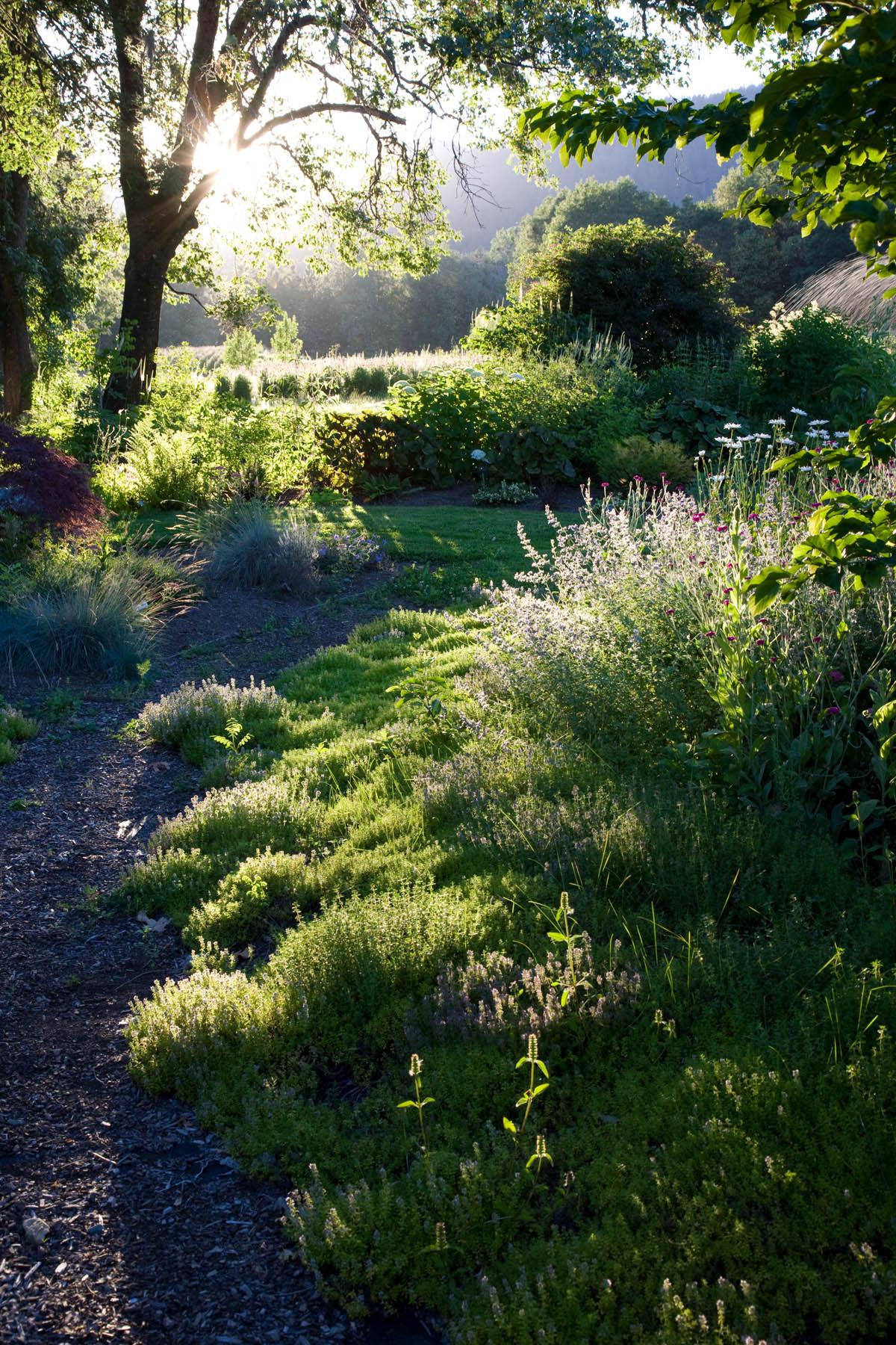 0 6 Herb Pharm Sunset Path_web.jpg