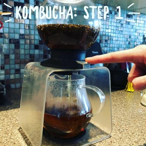 kombucha-step-1