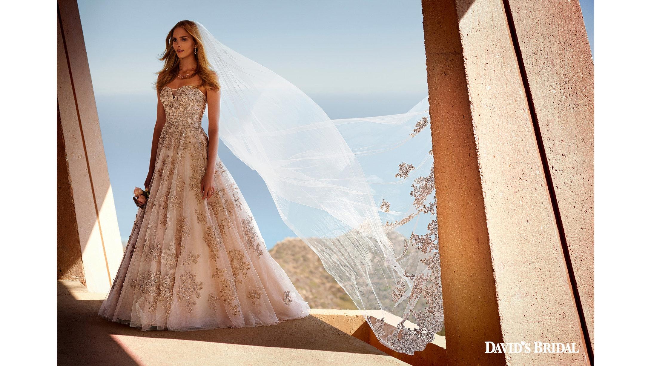client: david's bridal