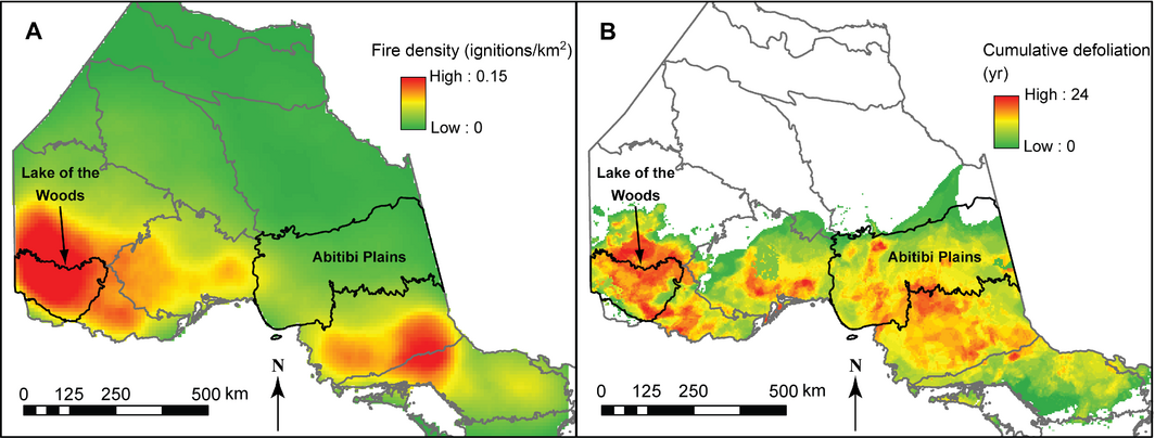 Figure 2  - Fire and eastern spruce budworm disturbance history in Ontario. (A) Historical fire activity expressed as the number of lightning-caused ignitions per square kilometer from 1963 to 2000. (B) Cumulative defoliation between 1941 and 2000. Color intensity indicates the number of years of observed moderate and severe defoliation. The two ecoregions used in this study are indicated.