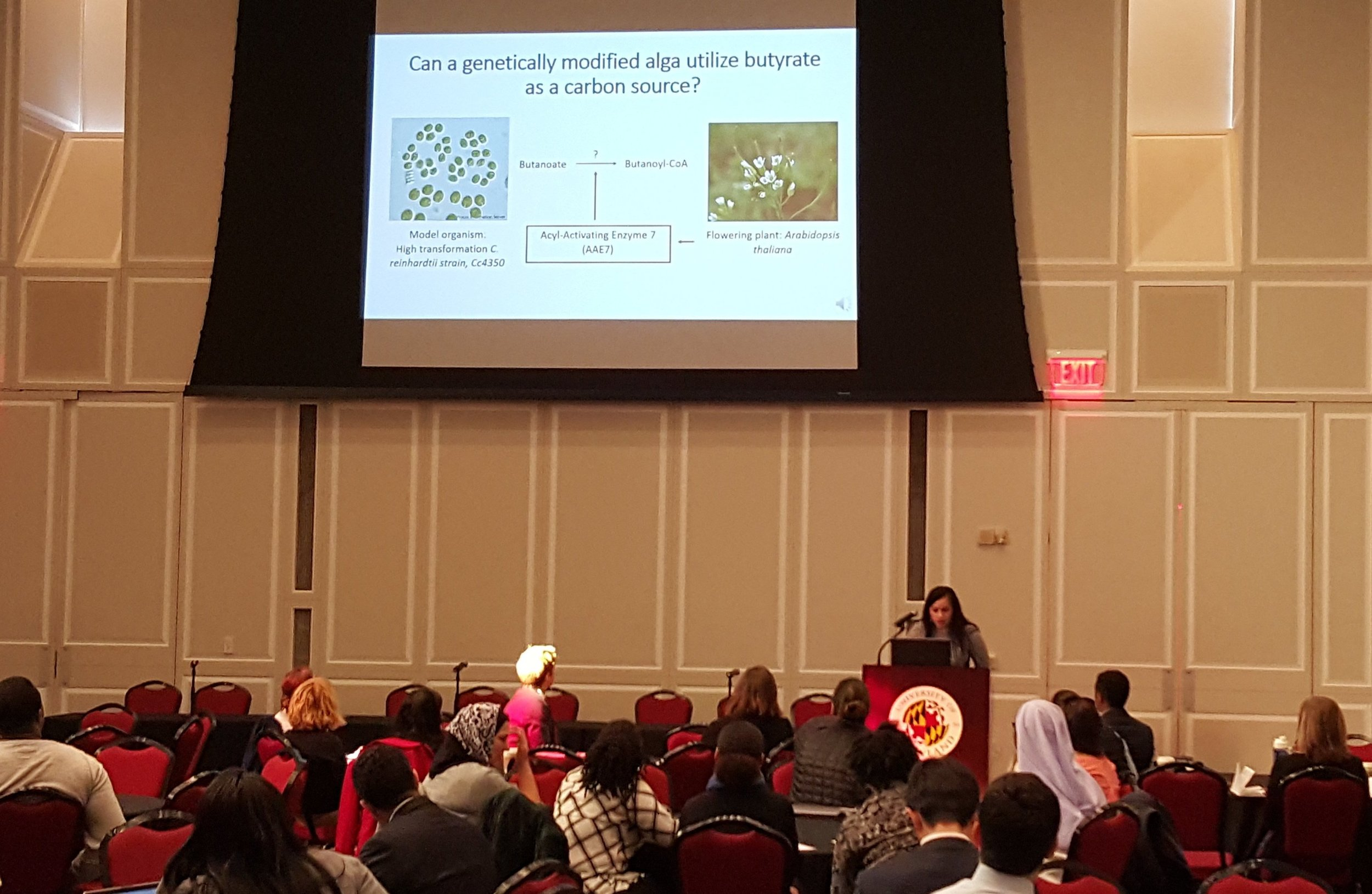 Presenting at the 11th Annual PROMISE-AGEP Research Symposium & Professional Development Conference.