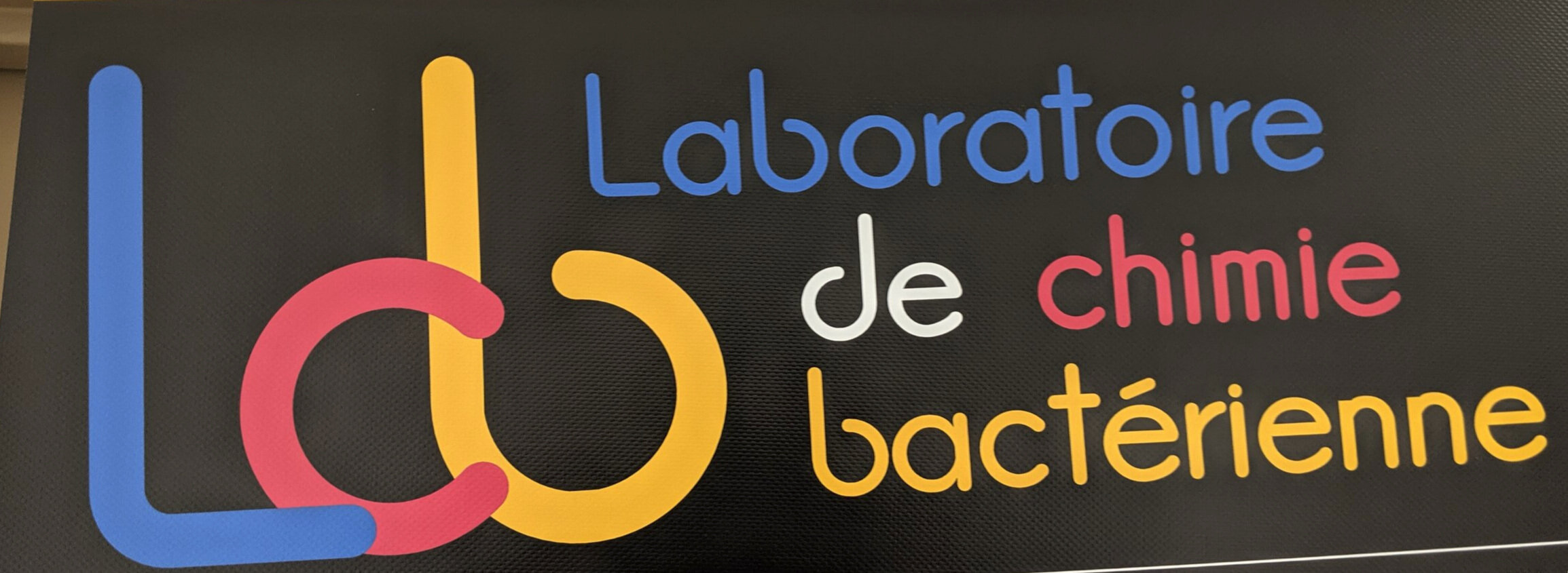 I am working with Dr. Talla in the Laboratory of bacterial chemistry at CNRS, located in Maresille, France.