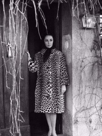 Elizabeth Taylor.jpg