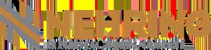 Nehring logo