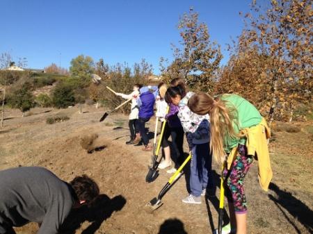 Dunn School students prepare soil for future medicinal garden
