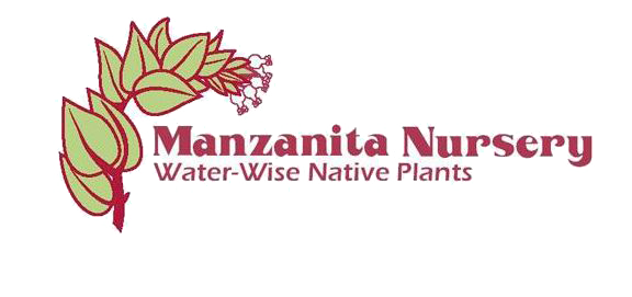 Manzanita nursery copy.png