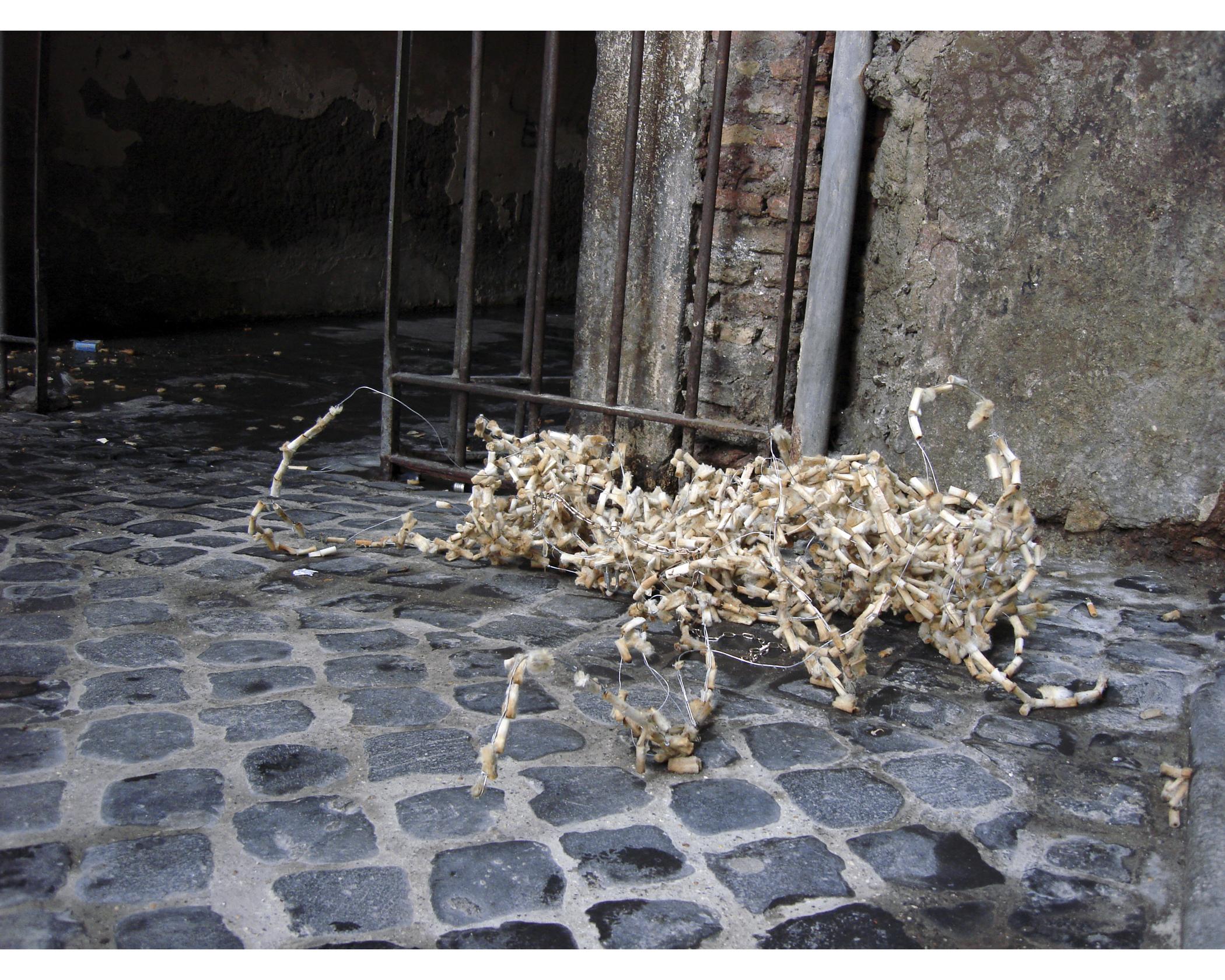 Carcass (urban intervention)