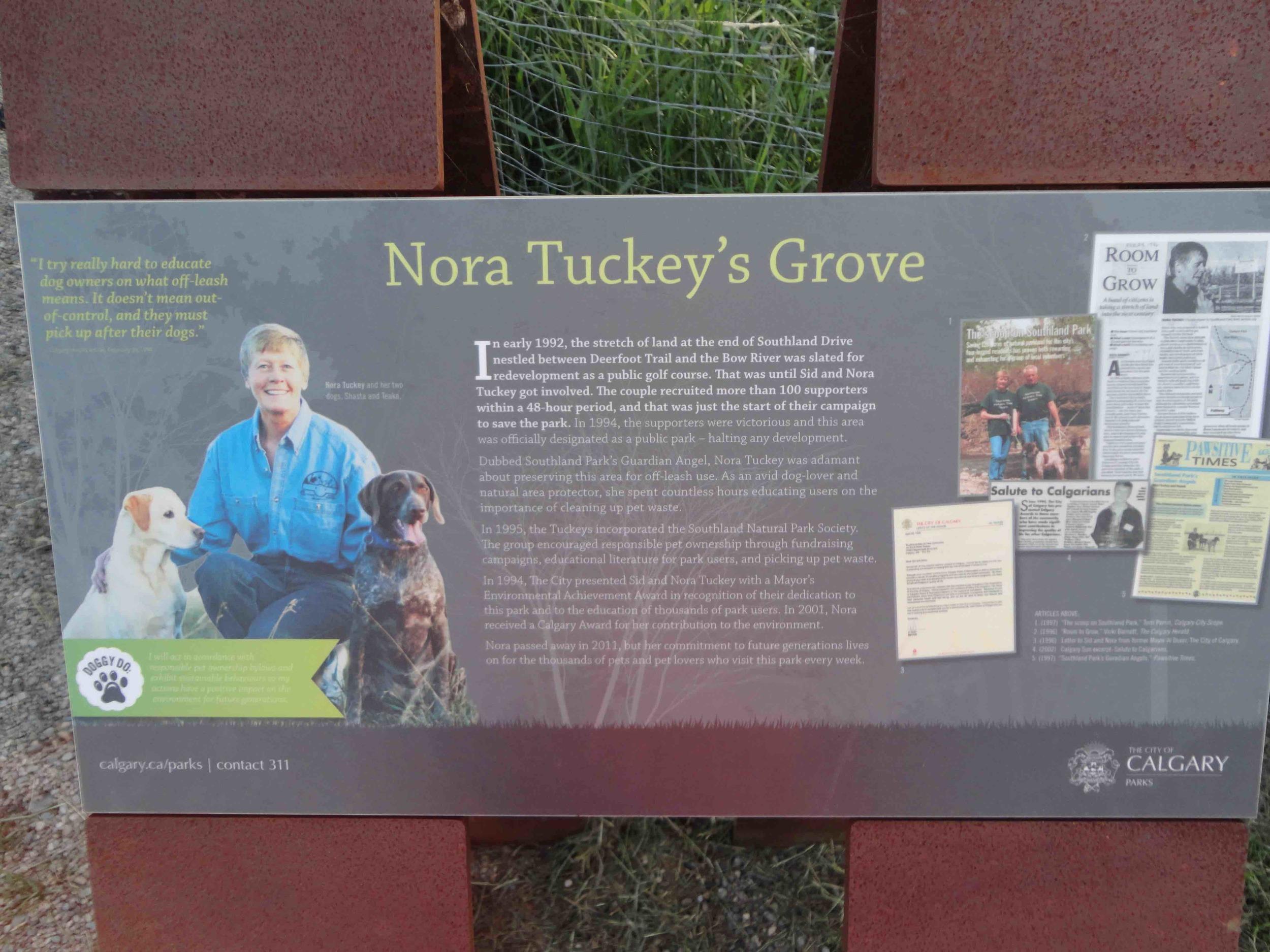 Sue Hig Nora Tuckey.JPG