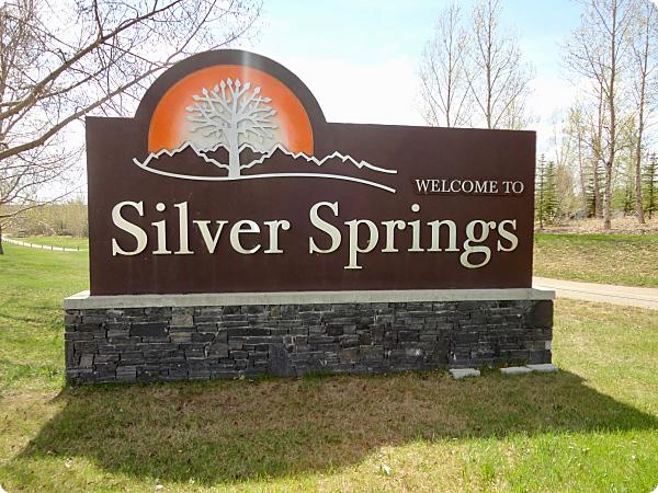 Silver Springs 4_opt.jpg