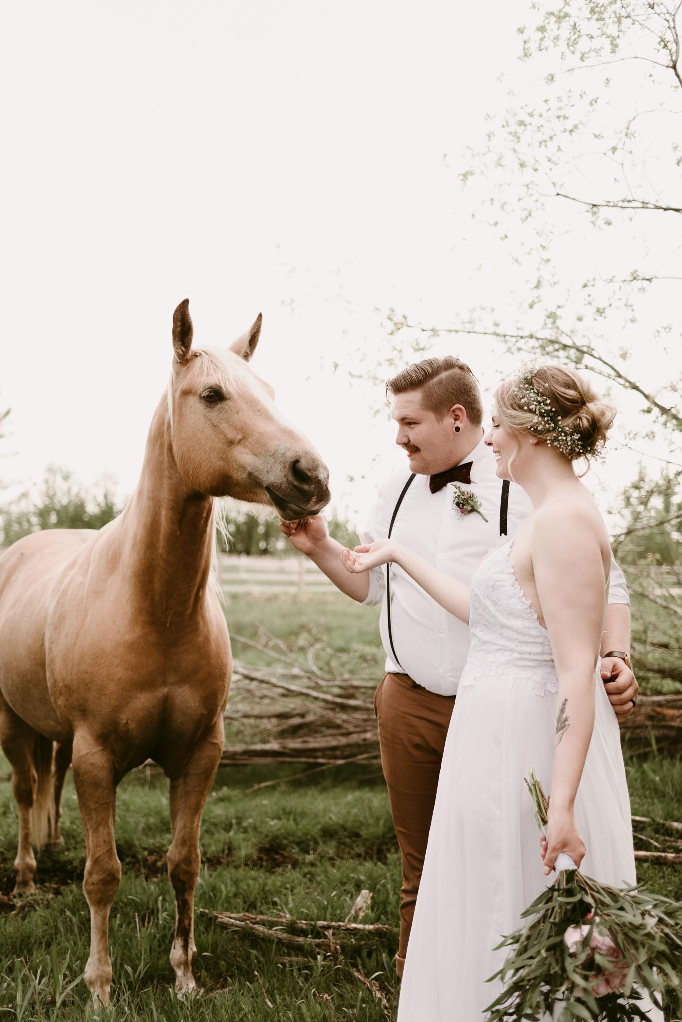 D&P-weddingblog-101.jpg