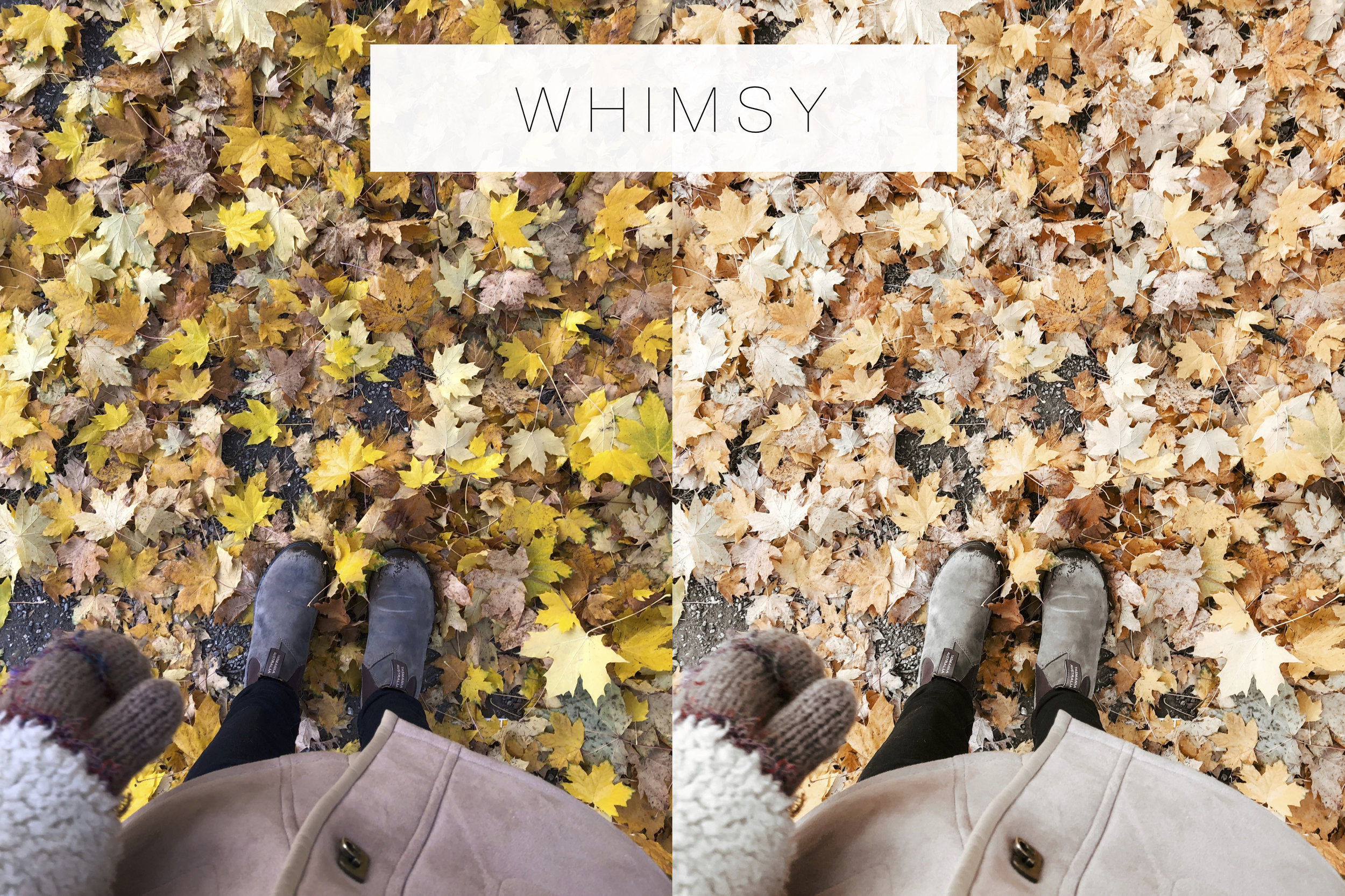 Whimsy - EmilyFaith