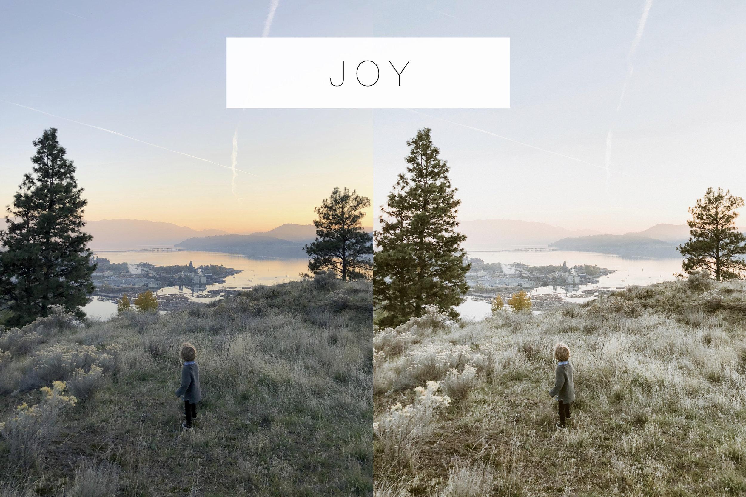 JOY- EmilyFaith