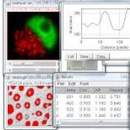 Quantifying Data