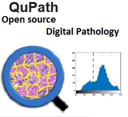 QuPath - Digital Pathology