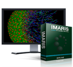 Imaris  - (Bitplane, Inc)Can be used for segmentation, visualisation and analysis of 3D and 4D (3D + time) imaging data. It can read most imaging files formats, including .ims, .nd2, .tif, and .lif.