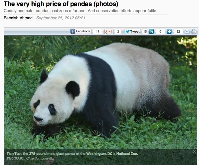 120925 - GlobalPost - Pandas for Blog
