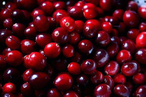 cranberries-flick-liz-west.jpg
