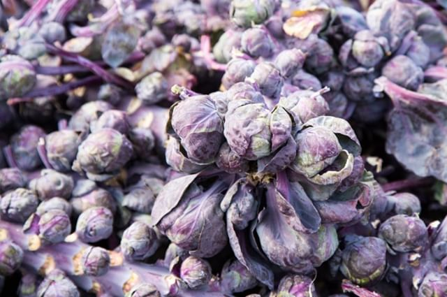 Just in 🔥🔥🔥Purple Brussels Sprouts. #EveryDayImBrusselin  Item # 14800