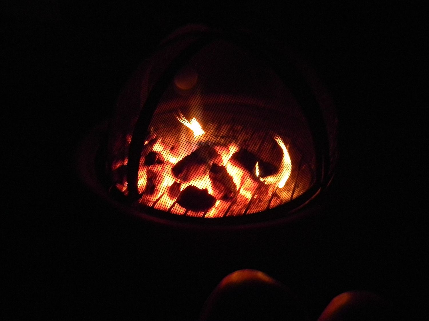 One of our many back yard bonfires with dear friends who are willing to look into the flames along side us.