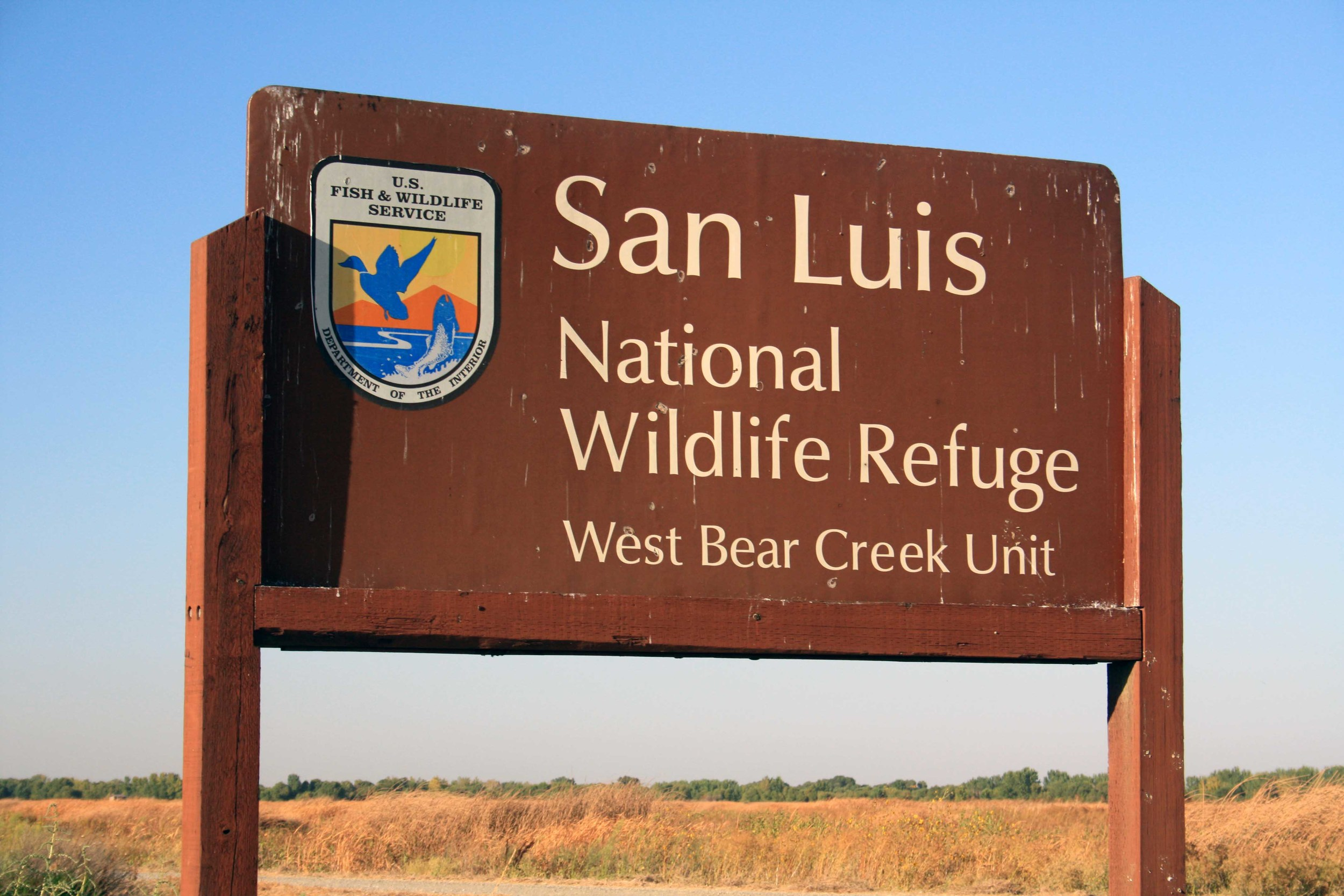 San Luis NWR -  PHOTO BY ADAM BLAUERT