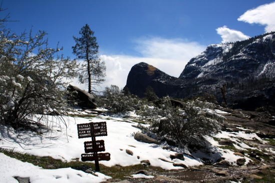 Spring Late Snowmelt Hetch Hetchy Trail - Photo by Adam Blauert