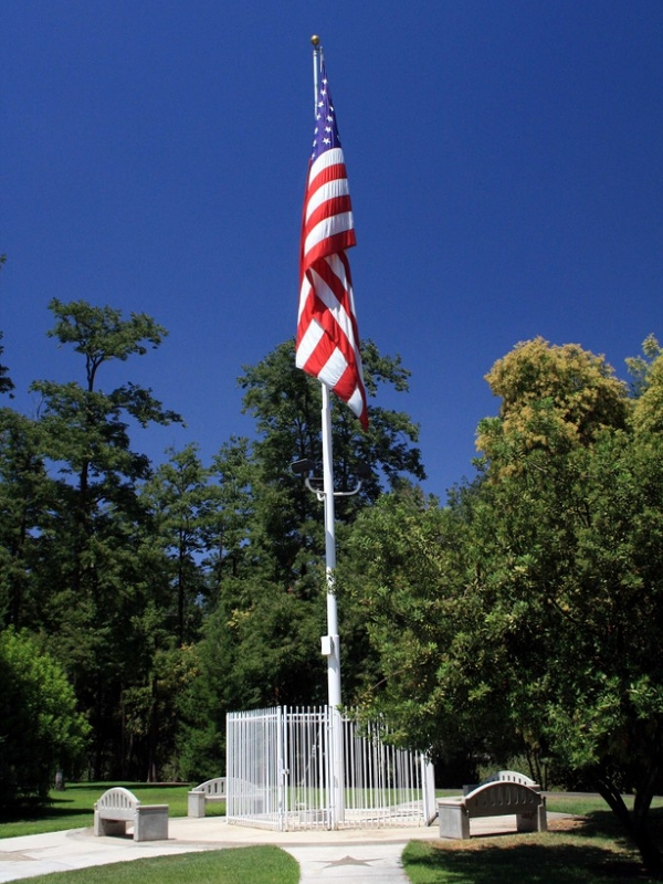 flag in park