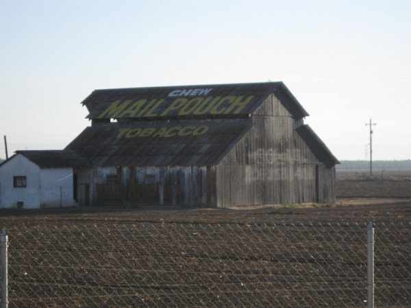 Mail Pouch Barn, South Merced, Photo from Newvine Personal Collection