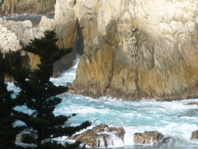 Merced-County-Events-Point-Lobos31.jpg