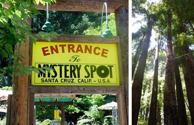 mystery-spot.png