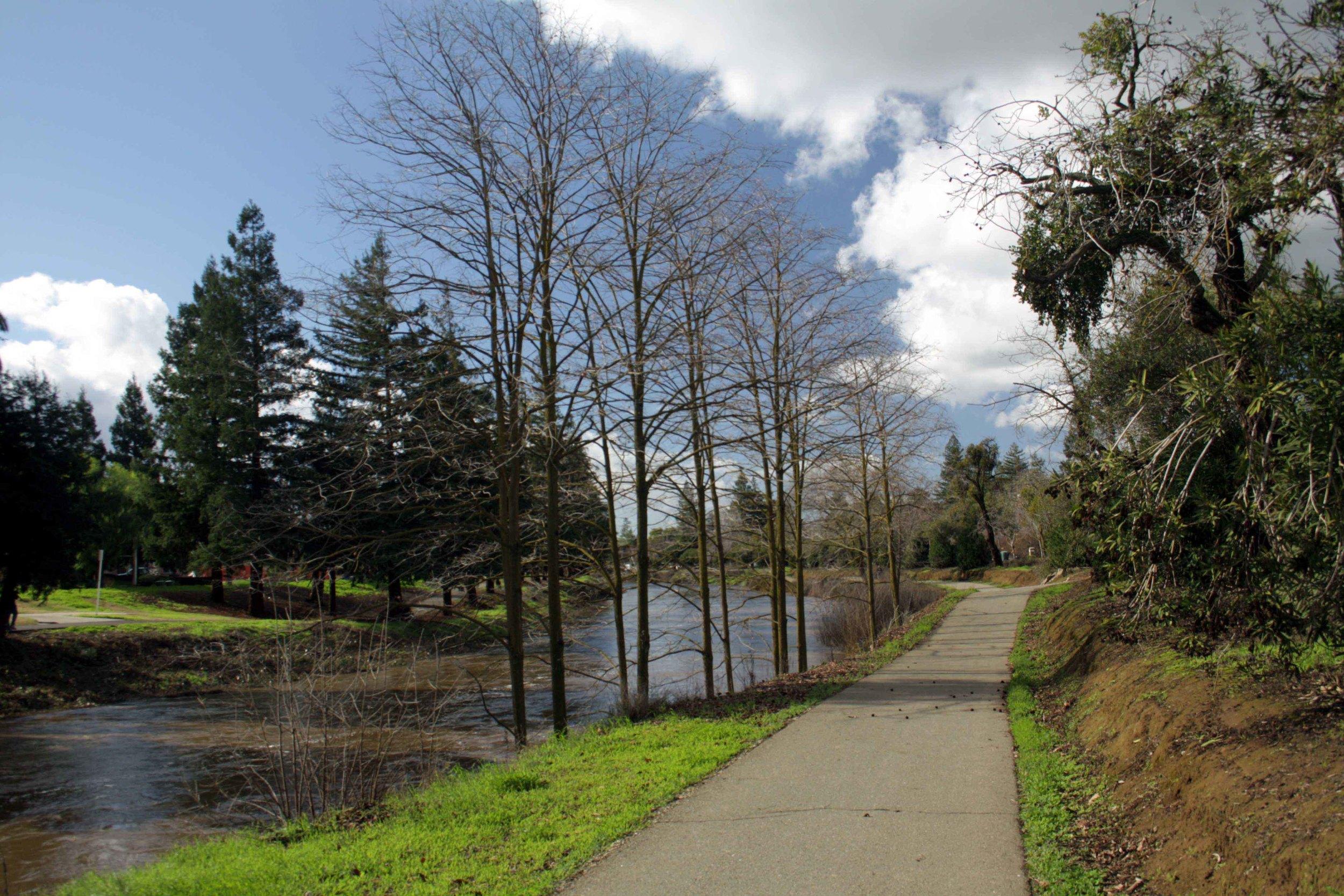 Bear-Creek-Bikeway-2.jpg