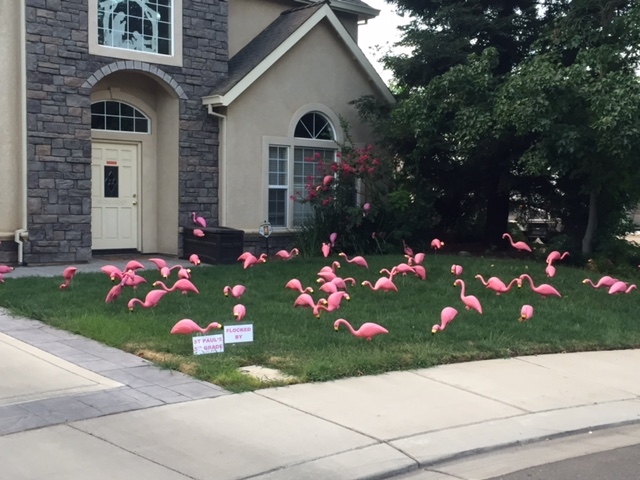A small sign in the front left of this lawn tells the family living there and others that this decorating was done to raise money for the St. Paul Lutheran Fifth Grade. Photo by Steve Newvine